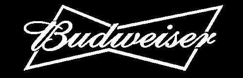 Ambient Skies - Budweiser - Case Study